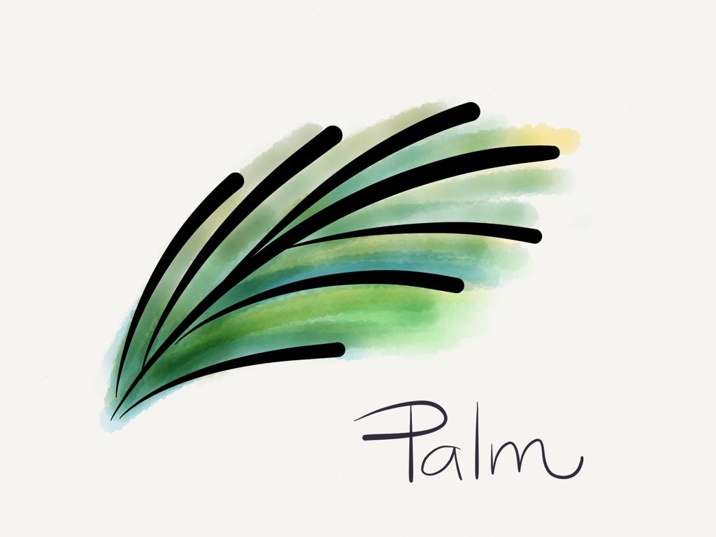 illustration of Palm Leaf